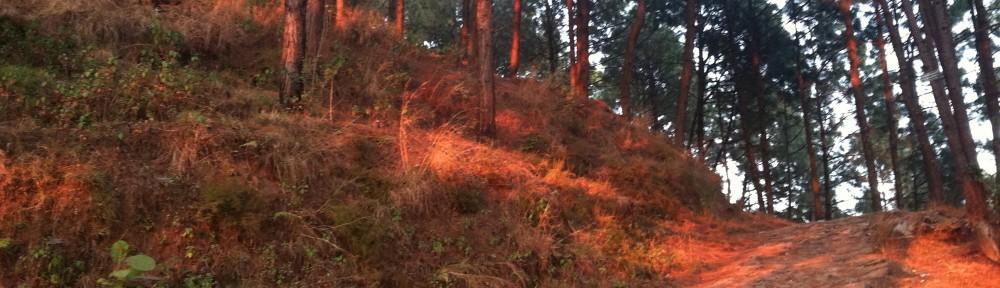 WhereGodCalls ~ Nepal