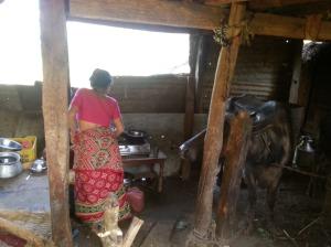dalit Benighat (18)