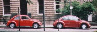 VW Bug (1)